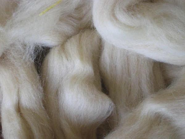 Coburger Fuchswolle - weiß-gelblich/rötlich mittelfein 32 mic im Band