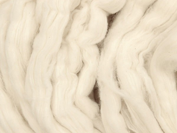 Baumwolle - blütenweiß im Band