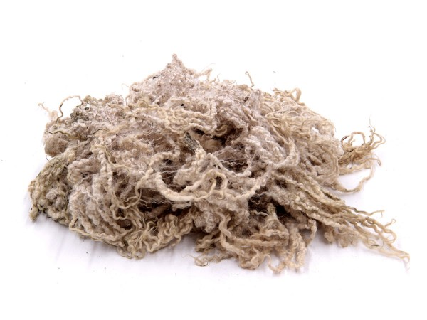 BlueFacedLeicester Wolllocken - naturweiß mittelfein (ungewaschen)