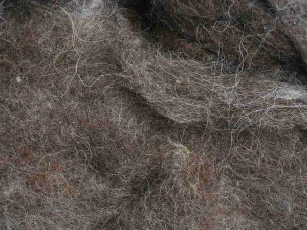 Bergschafwolle - graubraun mittelfein im Vlies