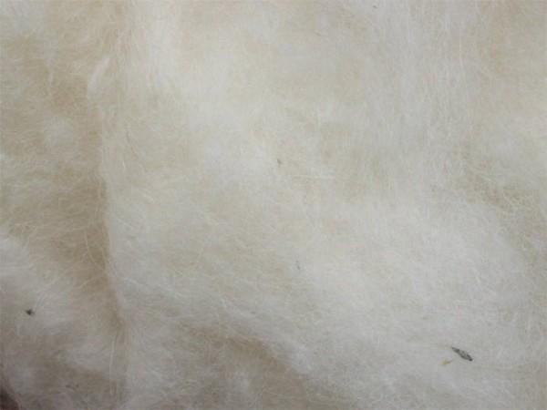 Isländische Wolle - signalweiß mittelfein im Vlies