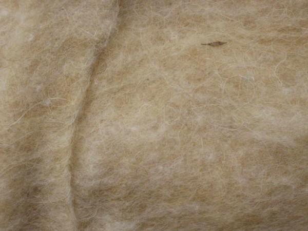 Karakulwolle - sandbeige mittelfein im Vlies